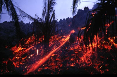 Éruption d'avril 1999 du mont Cameroun : le front de la coulée de lave aa, progresse en brûlant la végétation.