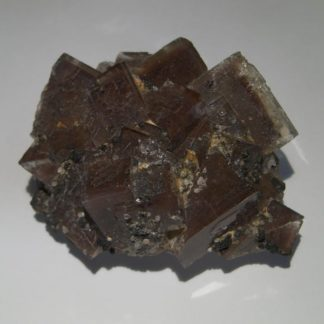 Fluorine de Peyrebrune.