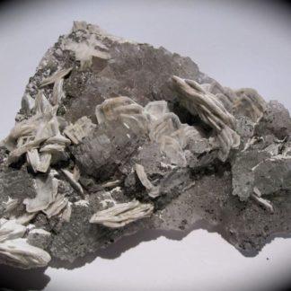 Baryte sur fluorine, mine de Voltennes, Saône-et-Loire, Morvan.