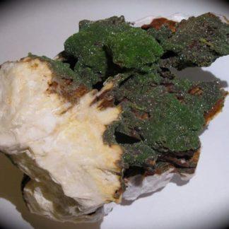 Pyromorphite verte sur baryte avec oxydes de fer, Les Farges, Corrèze.