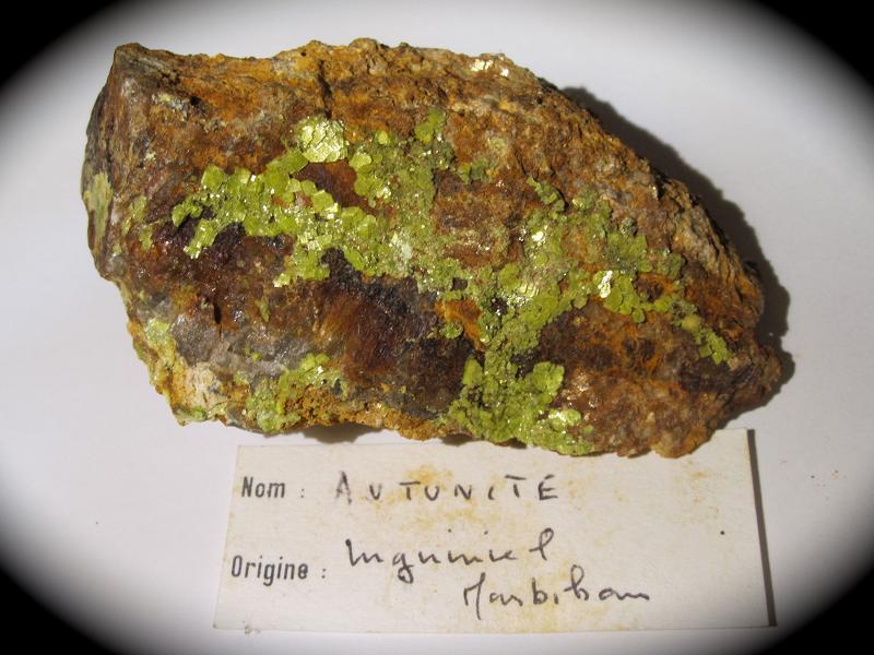 Autunite, Inguiniel, Morbihan, Bretagne.