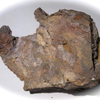 Masse de Chlorargyrite (Cérargyrite), Caracoles, Chili.