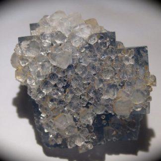 Cristaux de quartz sur fluorine bleue, Embournegade, Tarn.