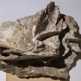 Pseudomorphose de gypse en quartz, Saint-Ouen, Seine-Saint-Denis.