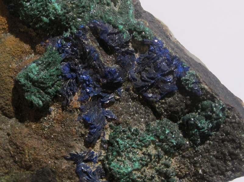 Azurite et Malachite, spécimen de 1903, mine de cap Garonne, Var.