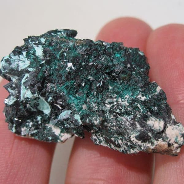 Cristaux de Brochantite, Milpillas, Cananea, Sonora, Mexique.