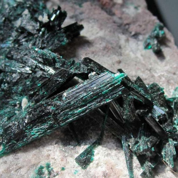 Brochantite, Milpillas mine, Cananea, Sonora, Mexique.