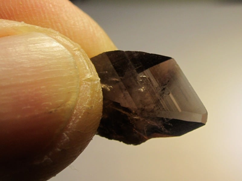 Cristal d'Axinite, Le Gendarme, Chamrousse, Oisans, Isère.