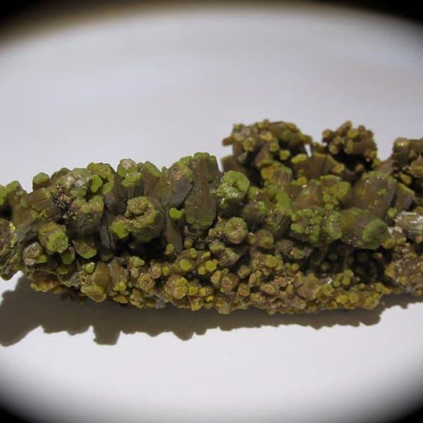 Pyromorphite vert brun à terminaison vert clair éclatant des Farges.
