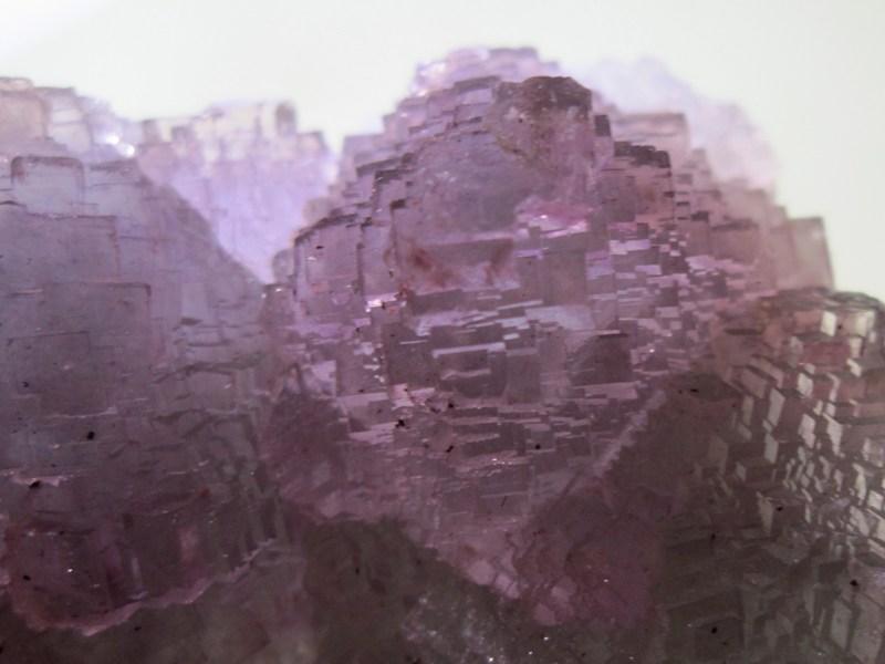 Fluorine violette octaèdrique, Fontsante, Var.