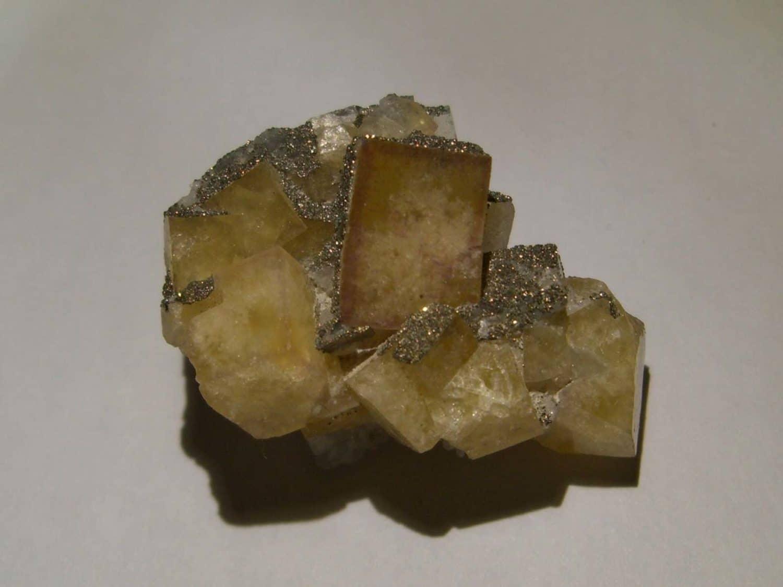 Fluorine jaune et pyrite de la mine de Montroc (Tarn).