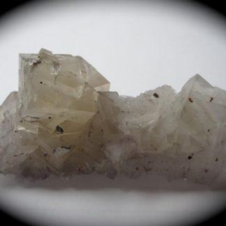Fluorine blanche, Fontsante, Var.