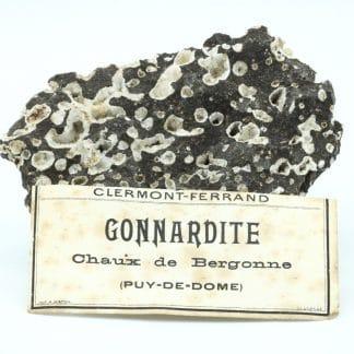 Gonnardite, La Chaux de Bergonne, Puy-de-Dôme, Auvergne.