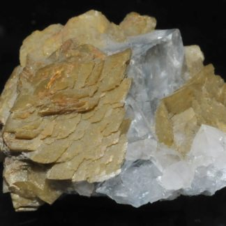 Fluorite et sidérite de Peyrebrune (Tarn).