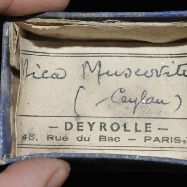 Mica muscovite de Ceylan (Sri Lanka, ex Deyrolle).