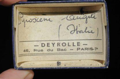 Augite pyroxène d'Italie (ex Deyrolle).