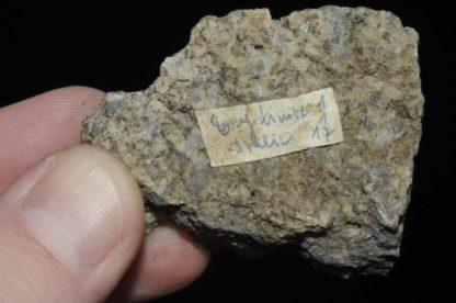 Tridymite d'Italie (ex Deyrolle).