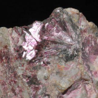 Erythrite - Érythrine (minéral)
