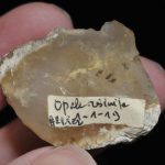 Opale résinite de l'Allier (ex Deyrolle).