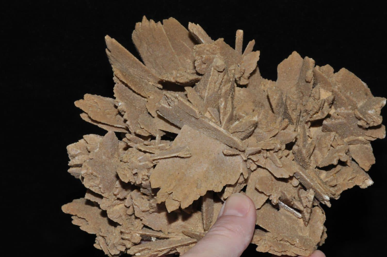 Rose des sables (gypse) du Mexique.