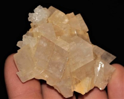 Calcite sur dolomite de Saint-Pierre-de-Mésage, Isère.