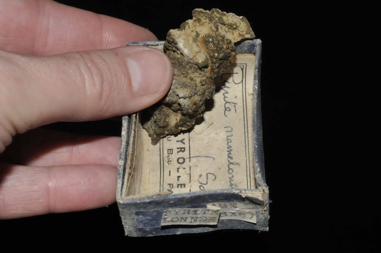 Pyrite mamelonnée de Saxe en Allemagne (ex Deyrolle).