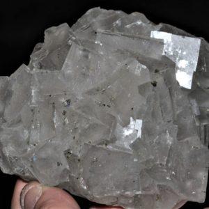 Fluorite et marcasite, mine de Fontsante, Var.
