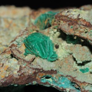 Chalcophyllite et chrysocolle, mine de Salsigne, Aude.