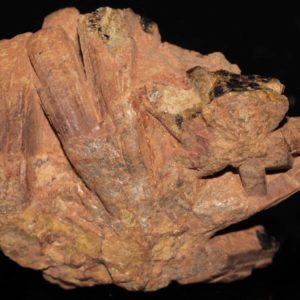 Fergusonite de Madagascar.
