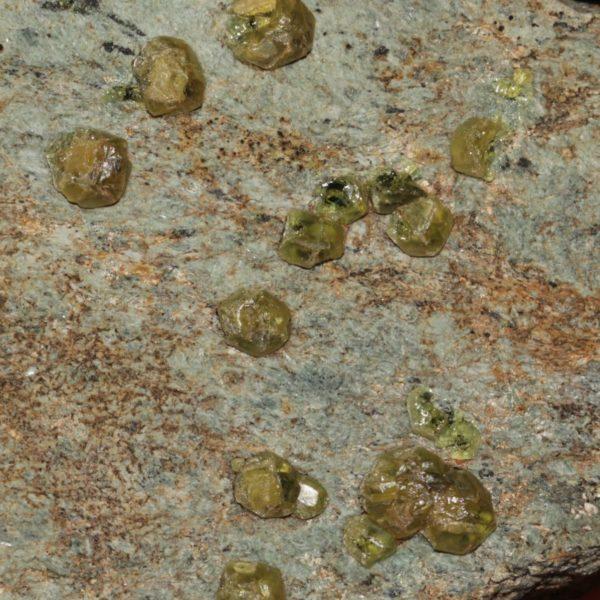 Grenat (variété démantoïde), Valmalenco, Valtellina, Italie.
