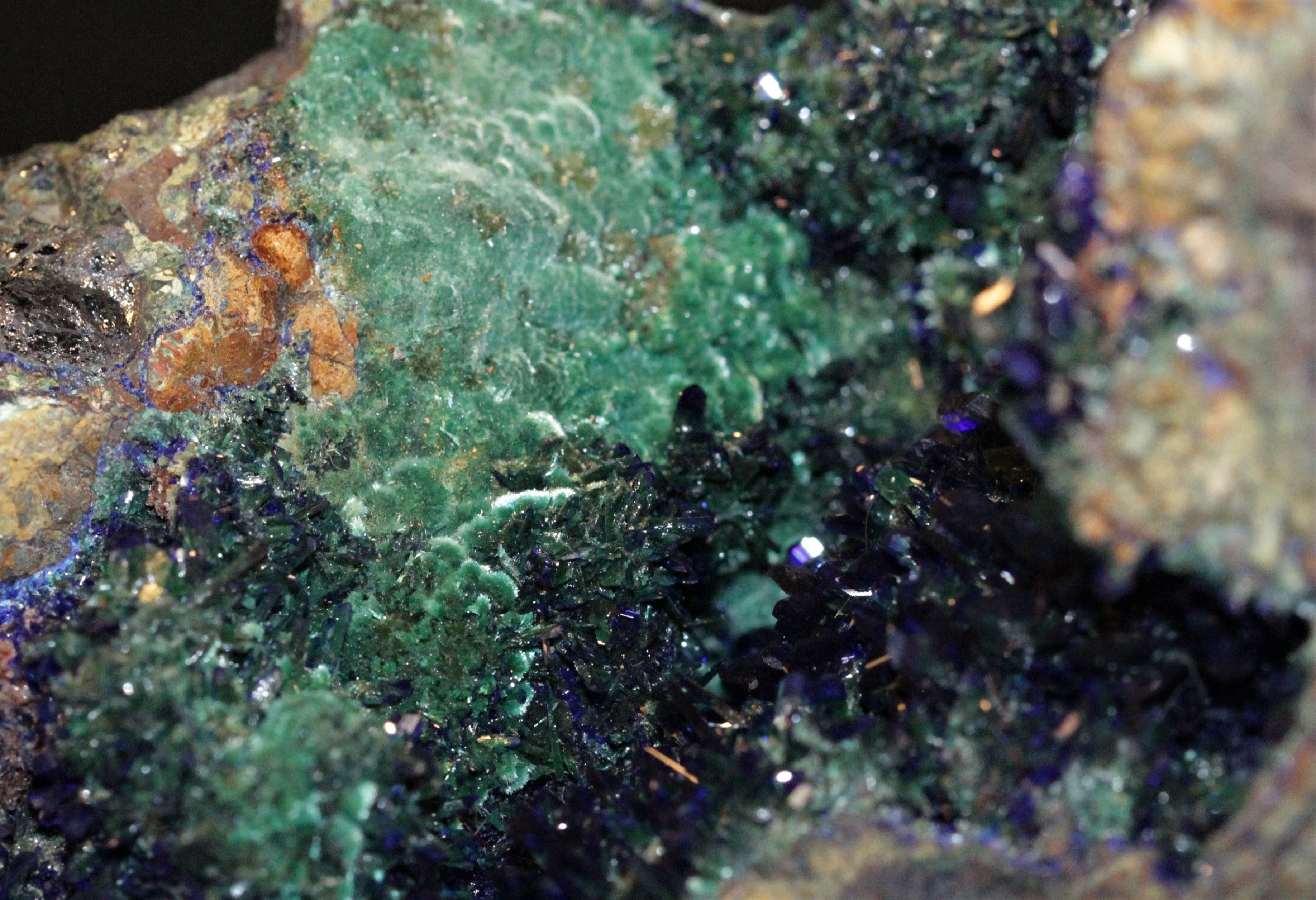 Azurite et malachite, Bisbee, Arizona, USA.