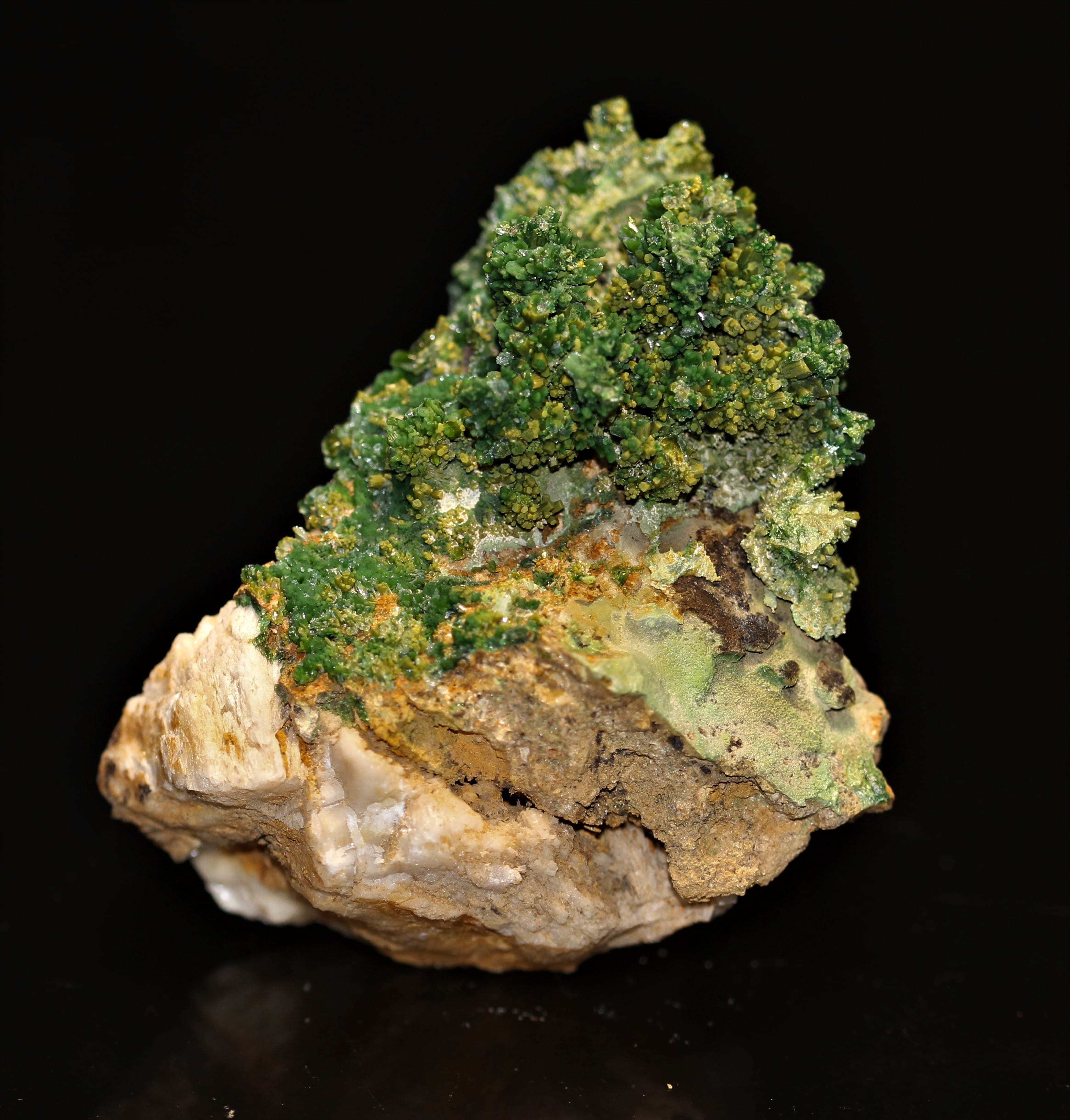 Pyromorphite verte en cristaux sur gangue de la mine des Farges (Corrèze)