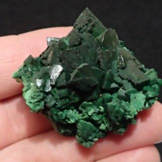 Torbernite (minéral)