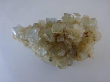 Fluorine et chalcopyrite sur quartz, Le Burg, Tarn.