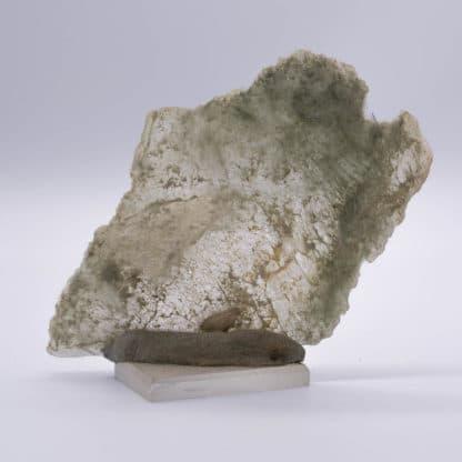 Byssolite sur calcite, Combe-de-la-Selle, Isère.