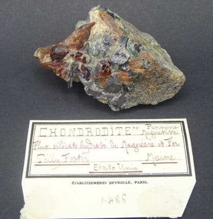 Chondrodite, magnétite et clinochlore, Tilly Foster Mine, New York, USA.