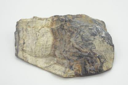 Schalenblende, mine de Schmalgraf, Lontzen, Belgique.