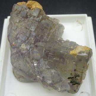 Fluorite à Fantômes et Calcite ferrifère, Fontsante, Var.