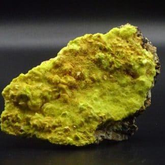 Sabugalite sur Phosphuranylite, mine de Margnac, Haute-Vienne (Limousin).