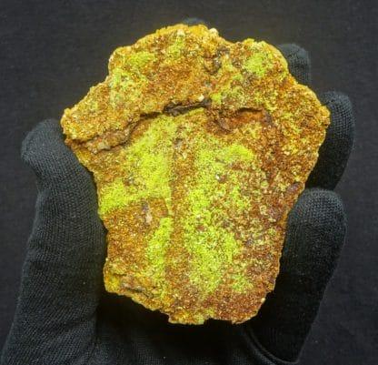 Autunite, mine de Margnac, Haute-Vienne, Limousin.
