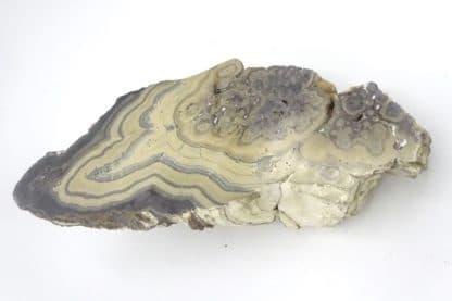 Schalenblende, Schmalgraf, mine de Lontzen, Moresnet, Belgique.