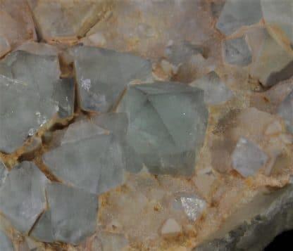 Fluorine verte en octaèdres sur Calcédoine, Mine de la Barre, Saint-Jacques-d'Ambur, Auvergne.