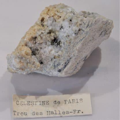 Célestine et Calcite, Le Trou des Halles, Paris.