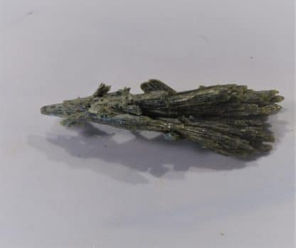 Gerbe de cristaux d'Epidote, La Botte, Chamrousse, Massif de Belledonne, Isère.