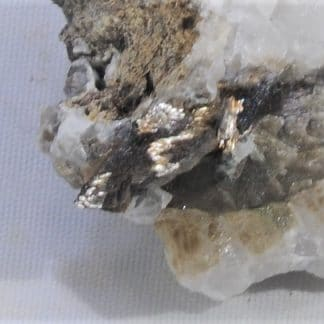 Anatase épigénisée en Rutile, col de la Madeleine, La Lauzière, Savoie.