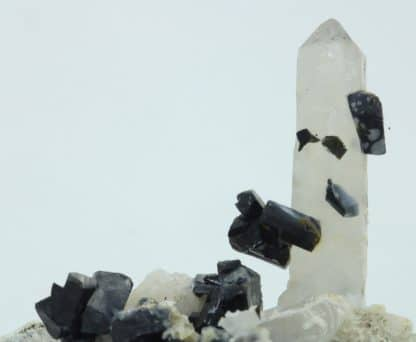 Ilvaïte et quartz, Campiglia Marittima, Grossetto, Italie.