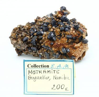 Mottramite, Berg Aukas mine, Grootfontein, Otjozondjupa Region, Namibie.