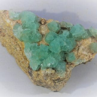 Fluorine verte, Colorado, USA.