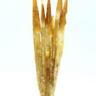 Celestine couleur miel, Mine de Machów, Pologne.