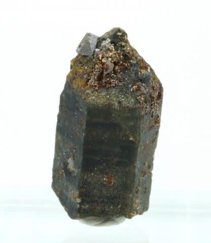 Anatase sur quartz et chlorite, massif de la Lauzière, Savoie.